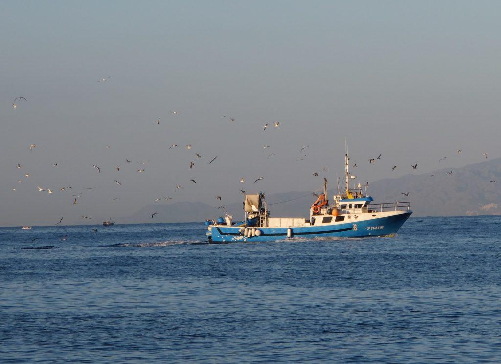 Fiskebåt på vei hjem fra havet.