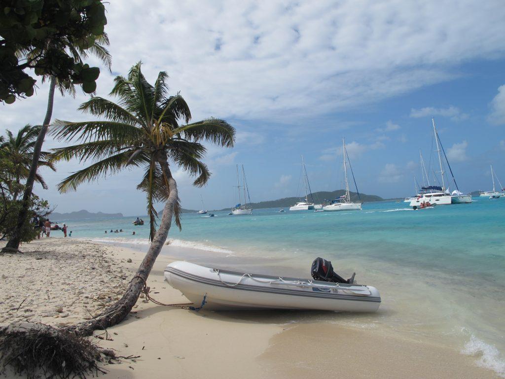 Numita koser seg i den varme sanden, trygt bundet fast i en palme.