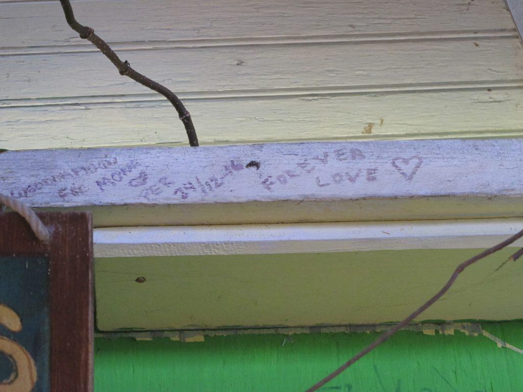 Turtelduene er jo så romantiske.