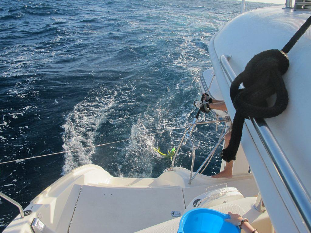 Den var ikke så stor (heldigvis), så kapteinen fikk halt den om bord uten store problemer.